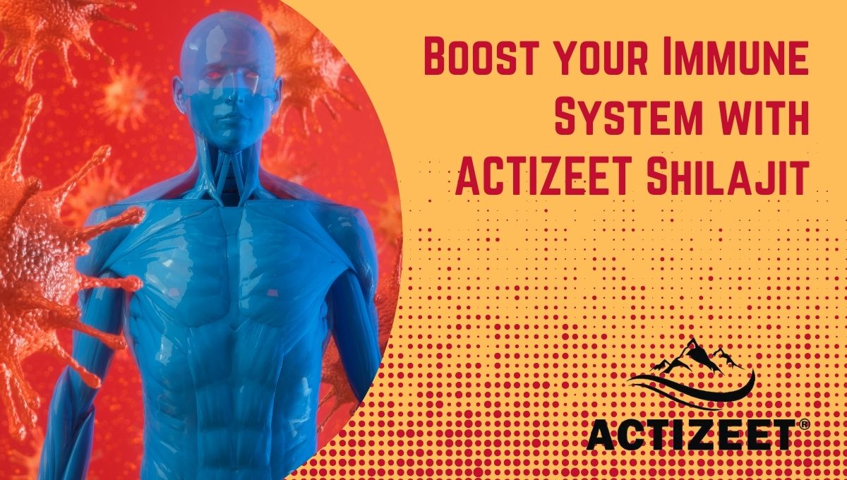 Boost your Immune System with actizeet Shilajit
