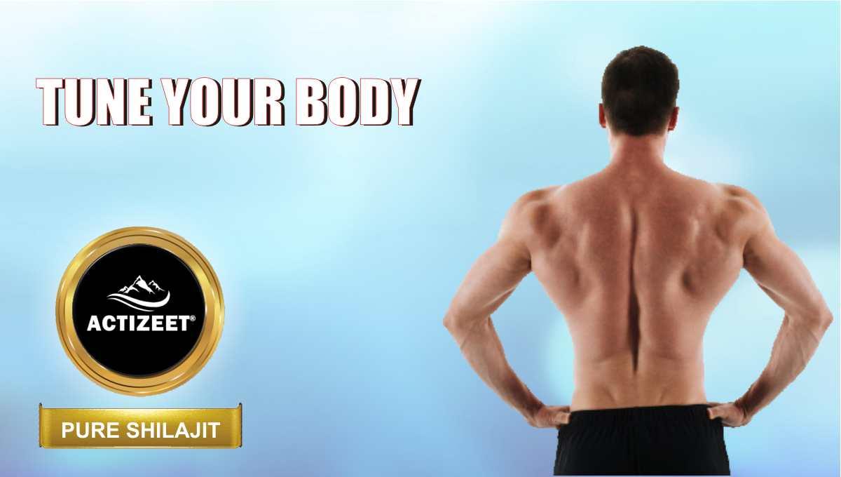 Shilajit for bodybuilding