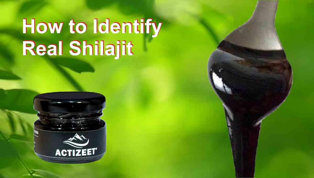 Real Shilajit