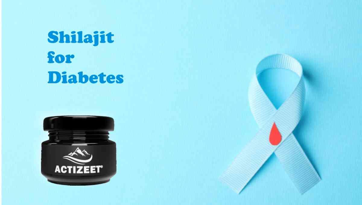 shialjit for diabetes