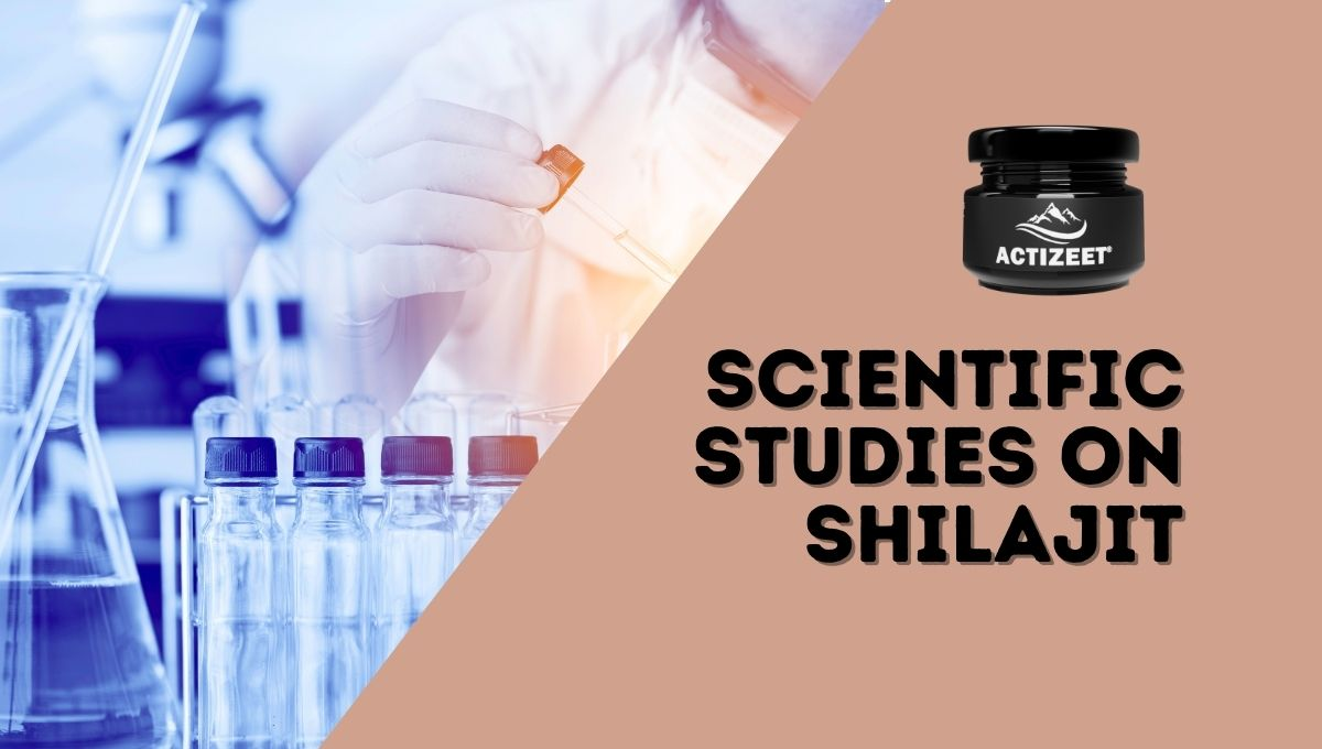 scientific studies on shilajit