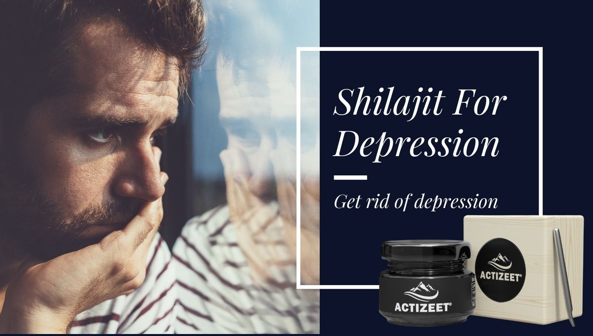 shilajit for depression