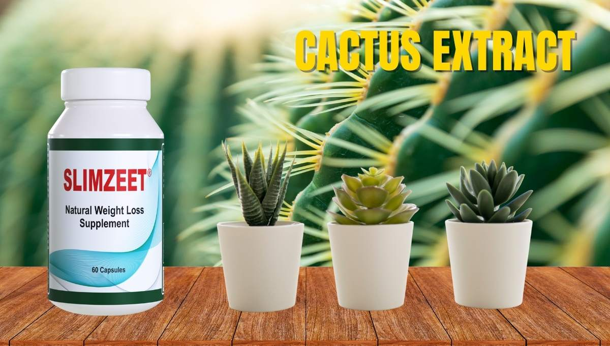 Cactus extract for weight loss