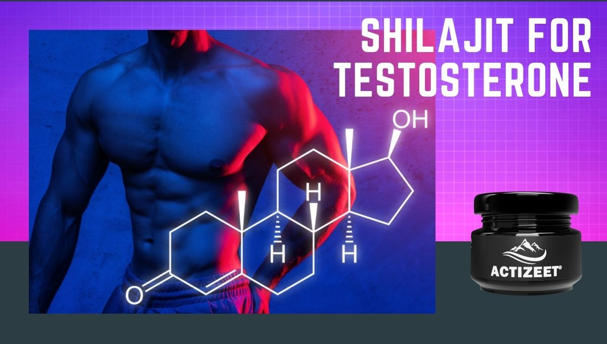 shilajit for testosterone