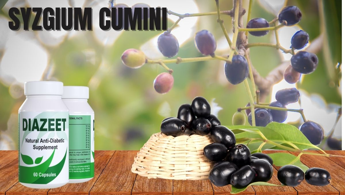 Syzgium Cumini For Diabetes
