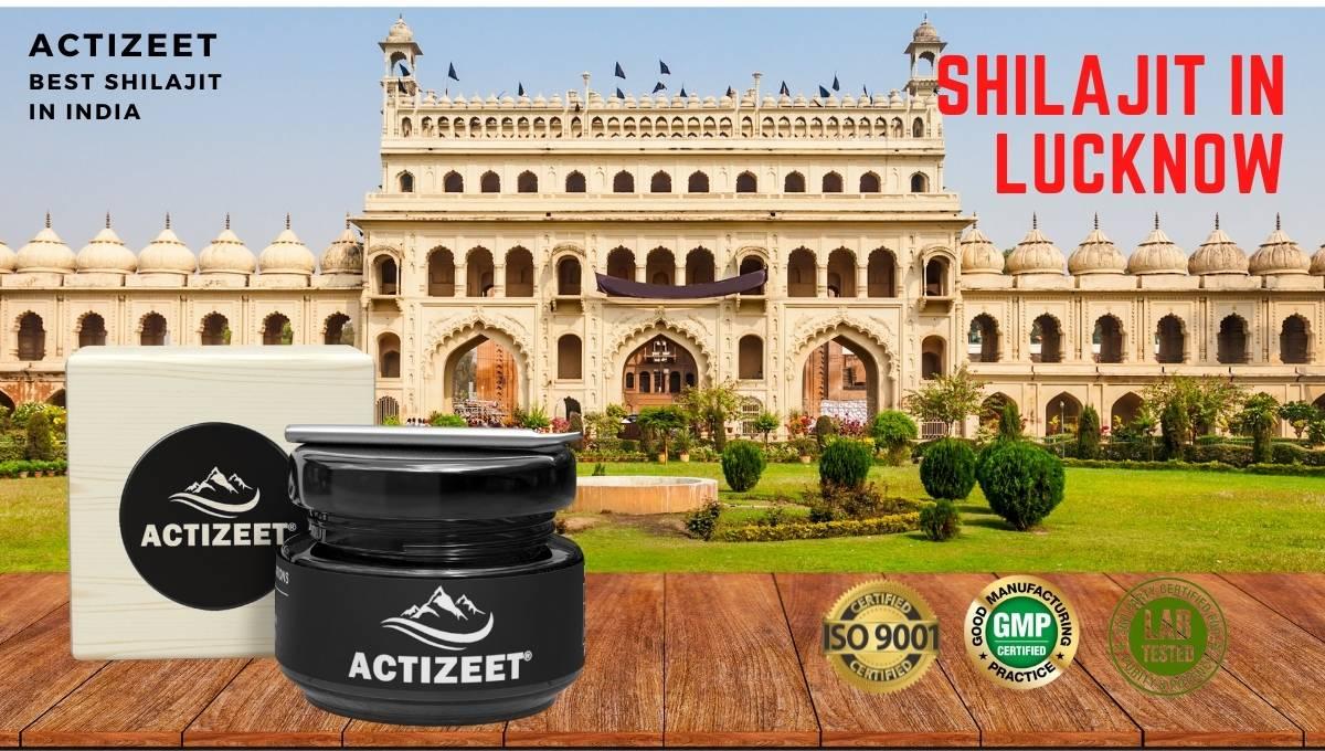 Shilajit in Lucknow (Uttar Pradesh)