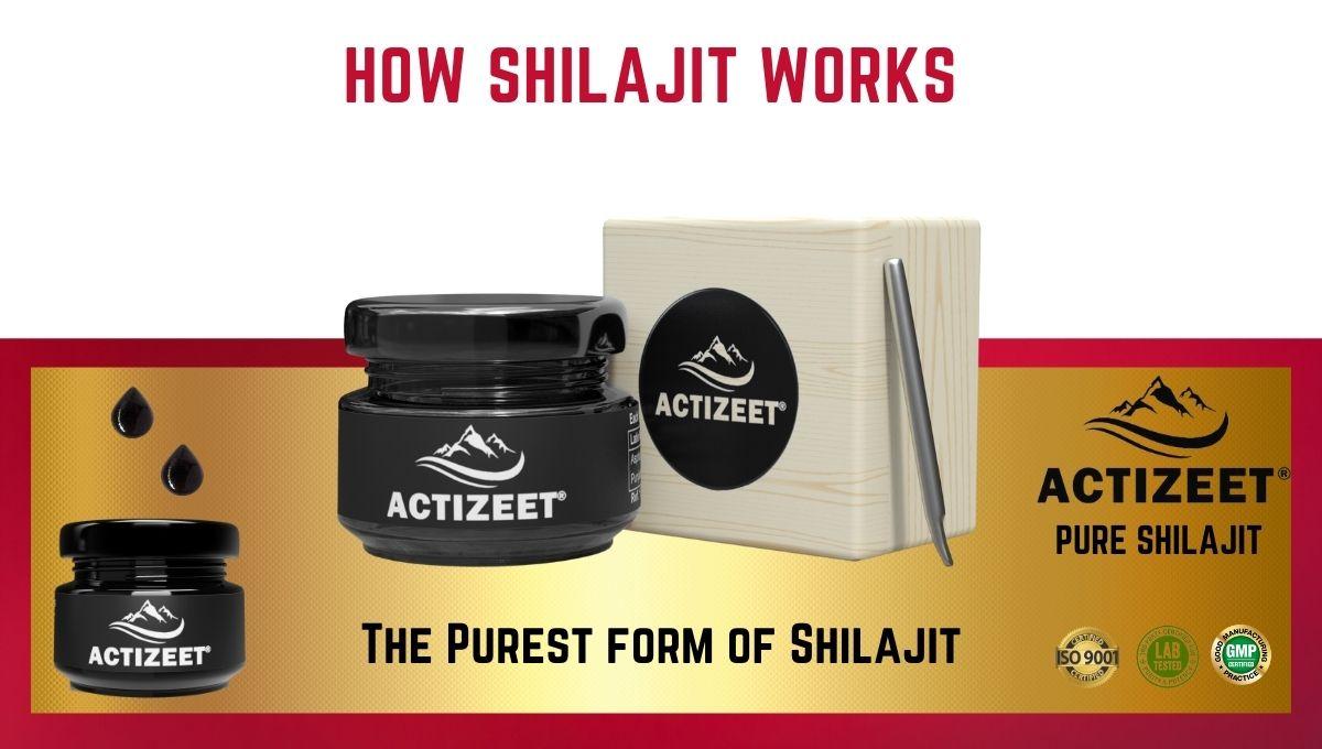How shilajit works